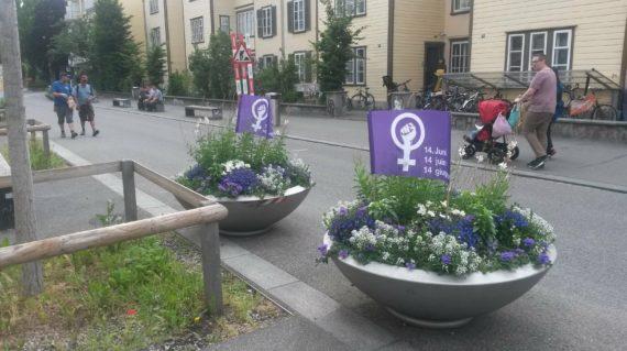 Blumentöpfe mit Streikfahnen